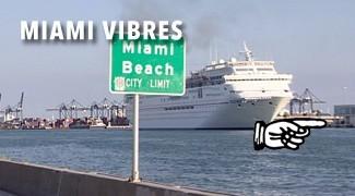 Miami Vibres