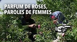 Parfum de roses paroles de femmes