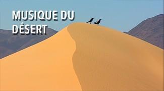 Musique du désert