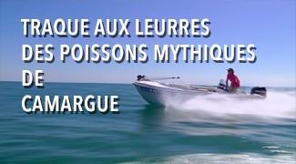 Traque aux leurres des poissons mythiques de Camargue