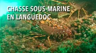 Chasse sous-marine en Languedoc