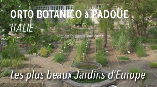 Orto Botanico de Padoue
