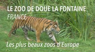 Le Zoo de Douai la Fontaine