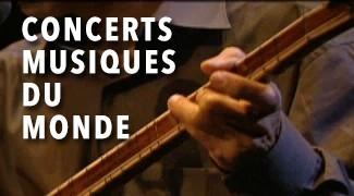 Concerts musique du monde